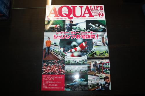アクアライフ 岐阜熱帯魚水草販売Grow aquarium