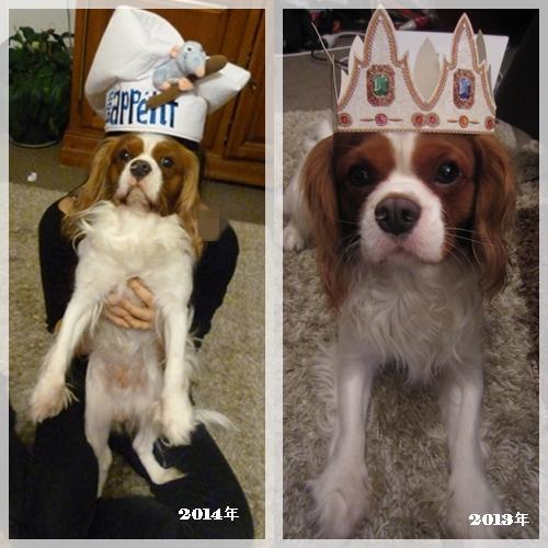 ガレット王冠