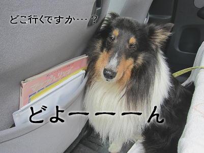 120524_01.jpg