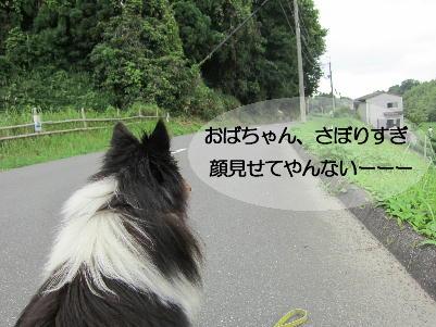 120724_06.jpg