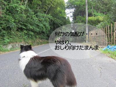 120724_07.jpg