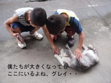 037_convert_20110804090851.jpg