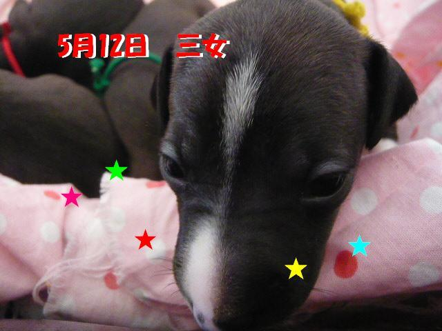 荳牙・ウ_convert_20120519102239