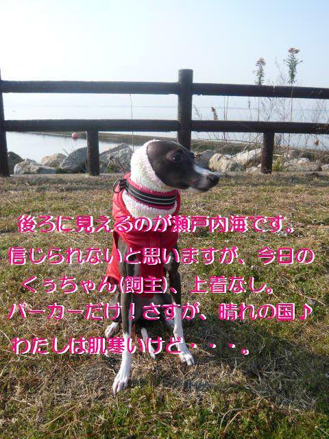 P1050987.jpg