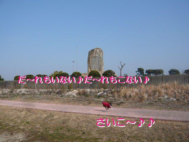 P1050990.jpg