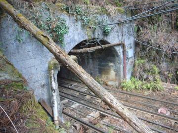 奥多摩工業曳索鉄道線09