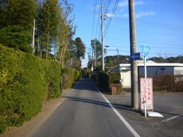 鹿行大橋02