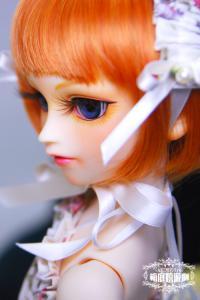 20110216_06.jpg