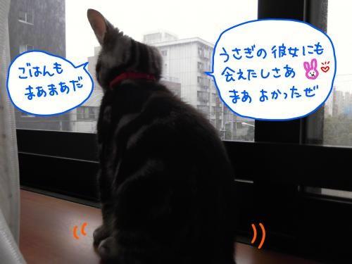 おめでとう3カ月2DSCF0411_convert_20110727094210