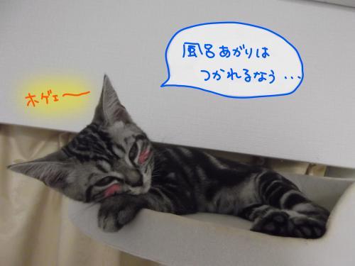 お風呂上がり5convert_20110813083309