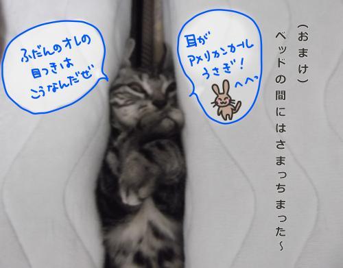 お風呂上がり6convert_20110813083357