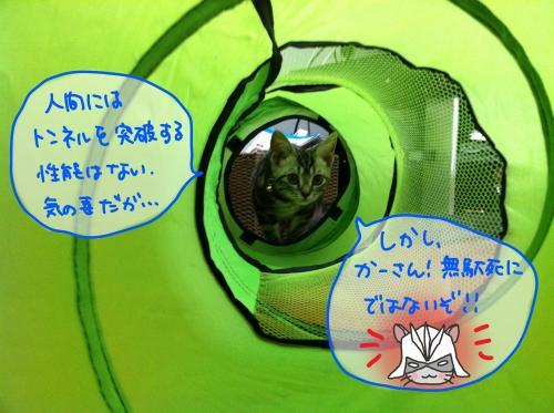 トンネル遊び4convert_20110817174041