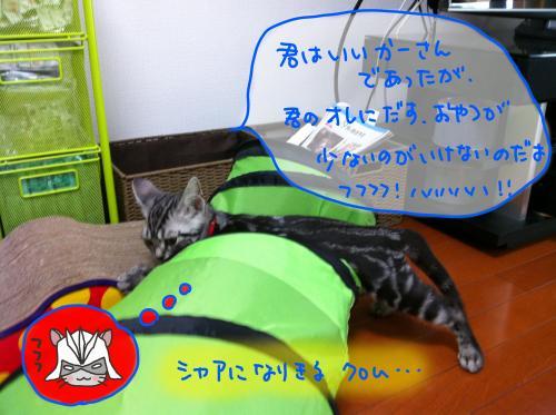 トンネル遊び1convert_20110817173722