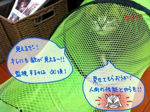 トンネル遊び3convert_20110817173939