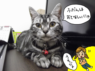 アニメ4DSCF1042