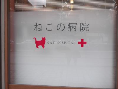 ねこの病院007