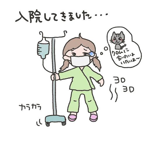 入院してきました