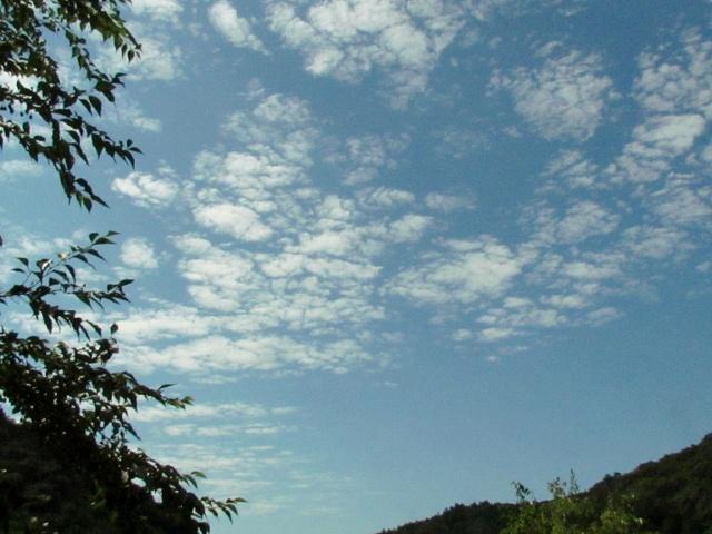 雲 (640x480)