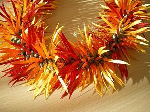 10 garbrera daisy2