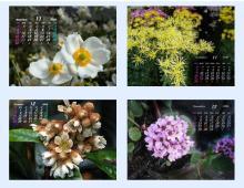 11月&12月のカレンダー