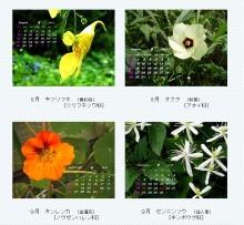 はまだより雑記帳-8月~9月のカレンダー
