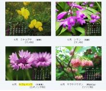 はまだより雑記帳-5月6月のカレンダー