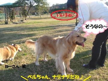 001_convert_20111217023806.jpg