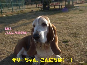 001_convert_20120210004349.jpg