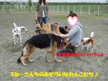 001_convert_20120423225445.jpg