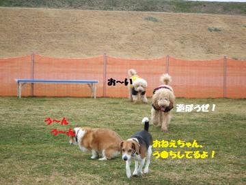 002_convert_20120306013751.jpg