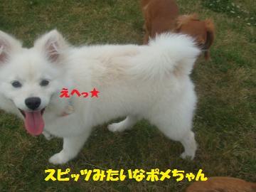 002_convert_20120528224342.jpg