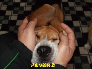 004_convert_20120301234724.jpg