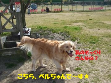004_convert_20120331013311.jpg