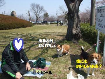 004_convert_20120409225348.jpg