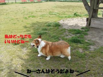 004_convert_20120419232027.jpg