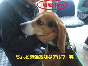 006_convert_20111114223546.jpg