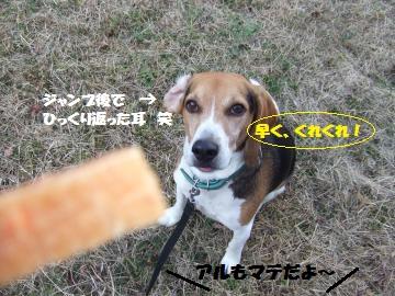 006_convert_20120104224505.jpg