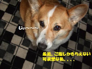 006_convert_20120317001455.jpg