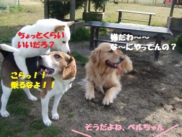 006_convert_20120331012350.jpg