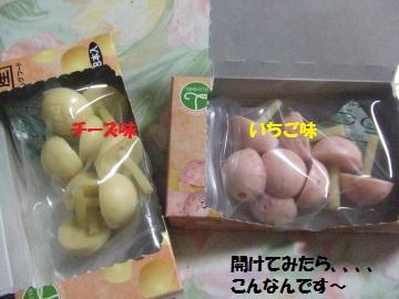 007_convert_20111205000339.jpg