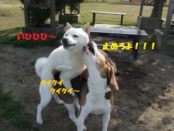 007_convert_20120331012436.jpg