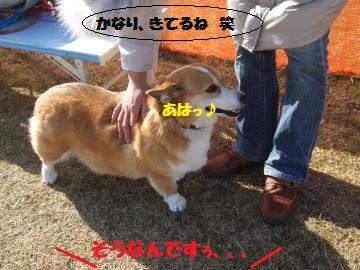 008_convert_20120213225329.jpg
