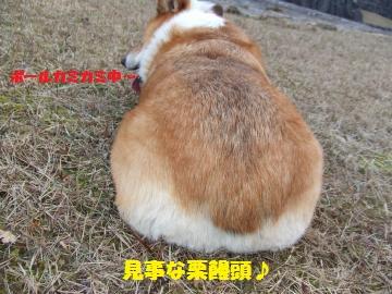 009_convert_20120104224810.jpg