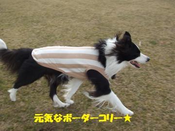 009_convert_20120222013413.jpg