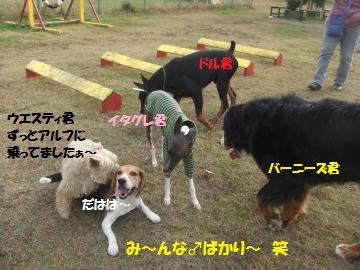 010_convert_20111130004956.jpg