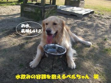 010_convert_20111224035452.jpg