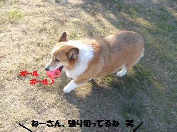 012_convert_20111224035601.jpg