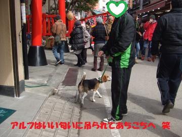 012_convert_20120226224542.jpg