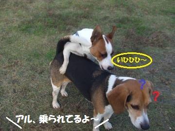 014_convert_20111122003308.jpg