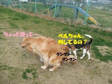 014_convert_20120312235550.jpg